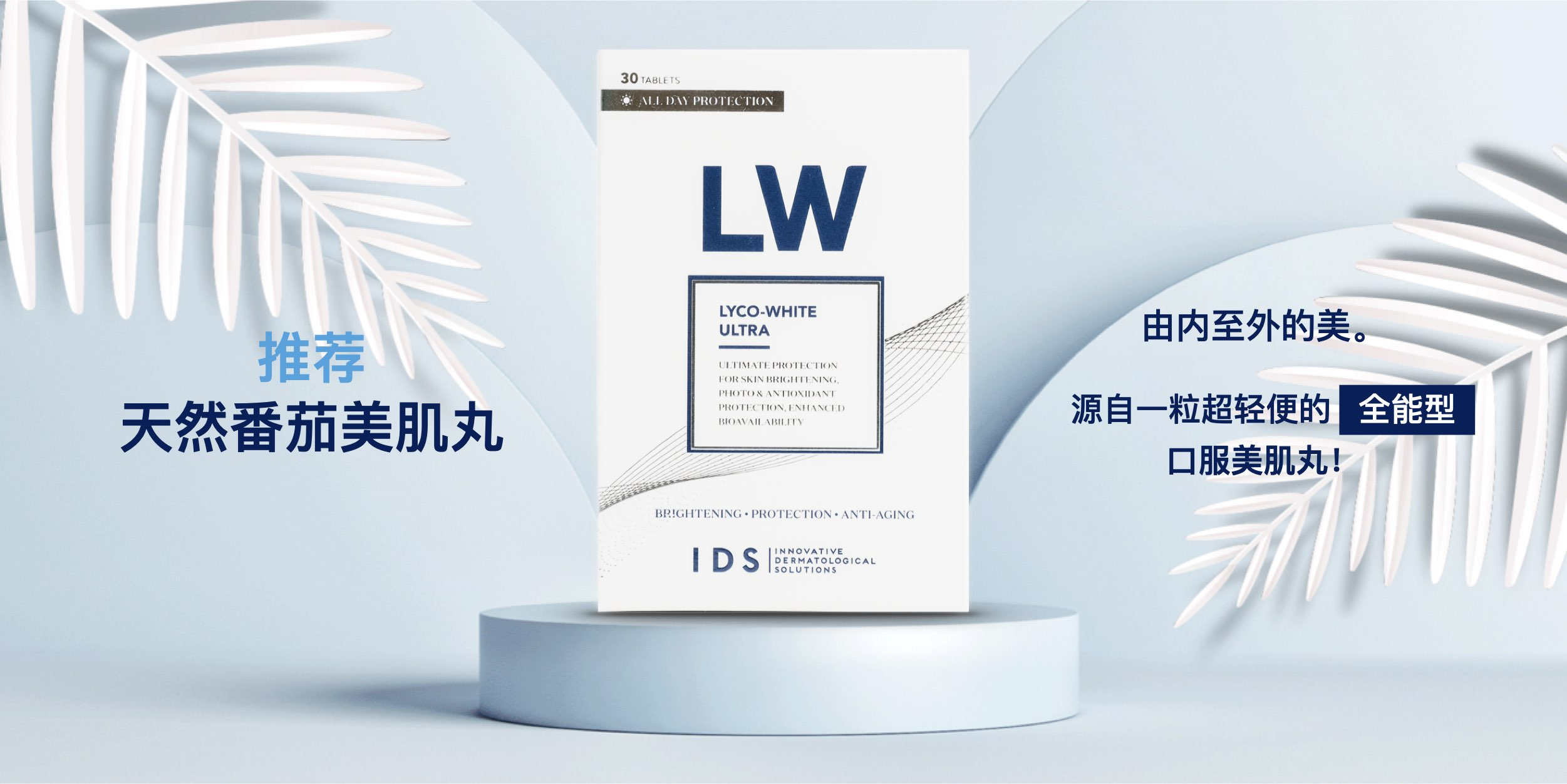 introducing Lyco White (Chinese)